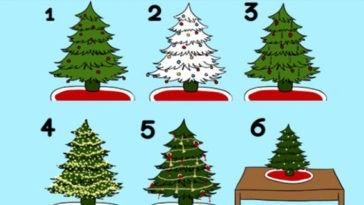 выберите елку